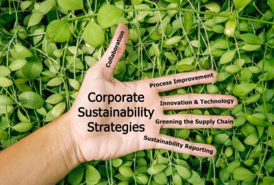 Are Environmental Collaborative Strategies Greener Pastures?